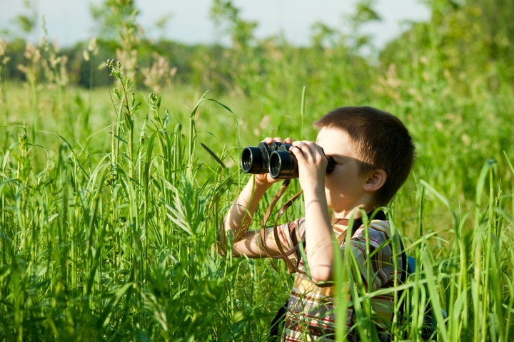 Child looking through binoculars - link to Research in Science Education